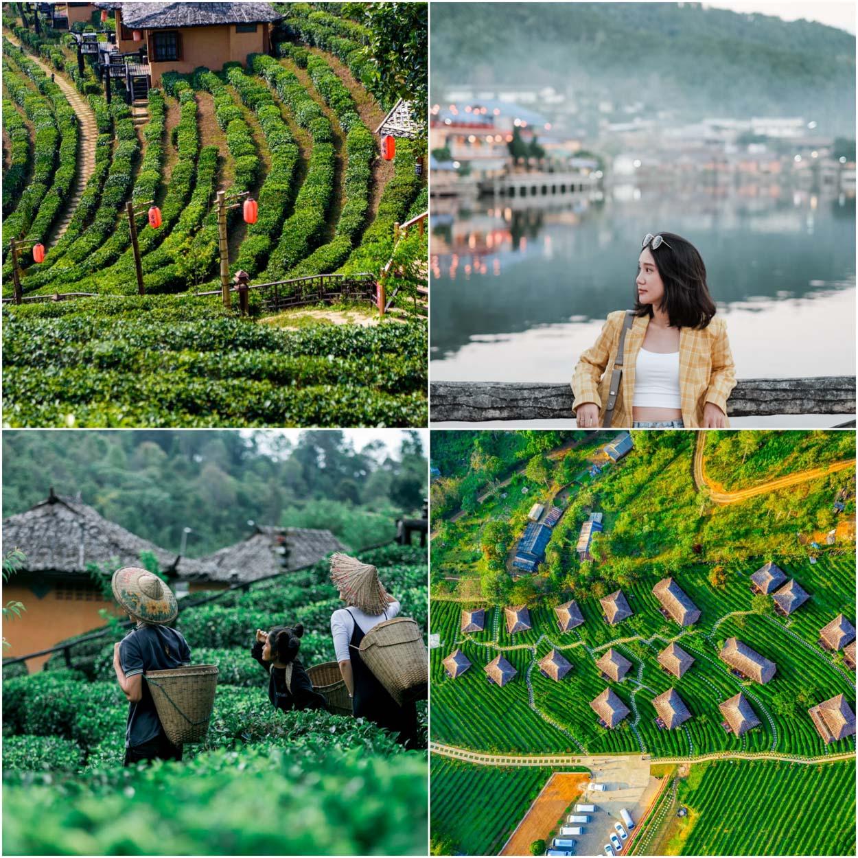ลีไวน์รักไทย คาเฟ่และรีสอร์ท กาแฟหอมและเข้มข้นมาก ใครที่ได้ไปพักผ่อนไปนั่งที่บาร์ริมน้ำคือฟินนน วิวหมอกกระทบกับแอ่งน้ำใหญ่สวยมวากก 10/10